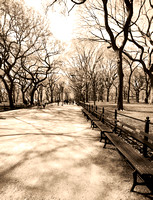Central Park in Sepia