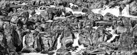 Great Falls Virginia - Black &White Panoramic