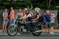 Rolling Thunder Antlers