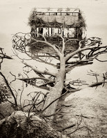 Duck Blind - Sepia
